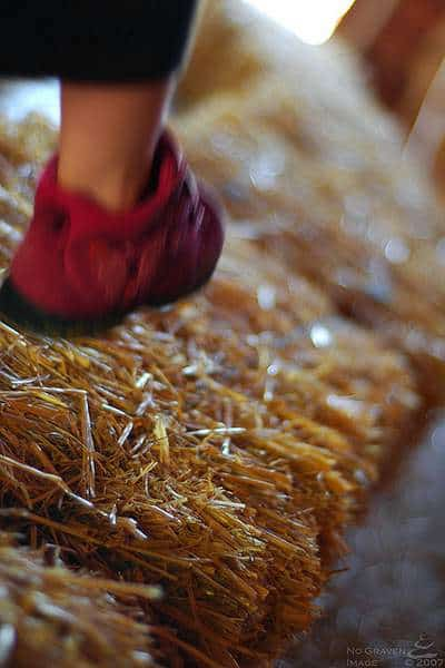 Hay foot, Straw foot - marching on a bale of straw