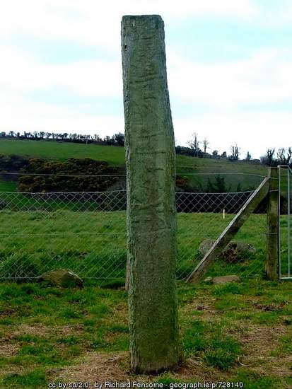 Standing Stone in Bantry, County Cork