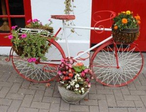 Flowers planted in a decorative metal bicycle flower planter
