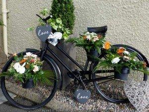 Vintage Irish Bicycle - the love bike