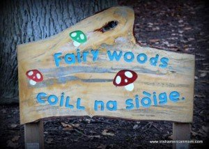 A sign in a Dublin park for the fairy woods