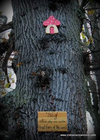 Fairy Woods of Clondalkin