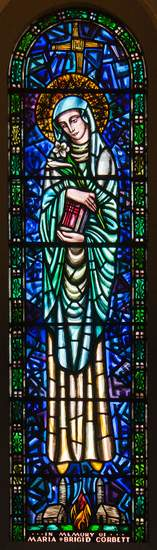 Stained Glass image of St. Brigid found in Saints Peter and Paul Church, Clonmel, County Tipperary