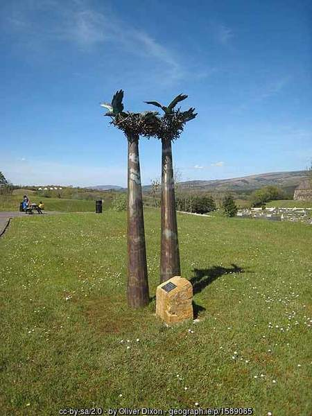 The Rookery Sculpture in County Leitrim
