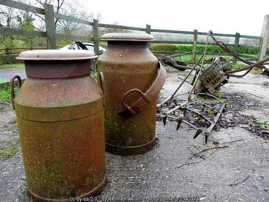 two rusty milk churns