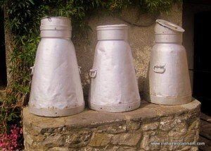 Three light steel creamery containers