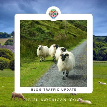 Sheep on a road with a border and text