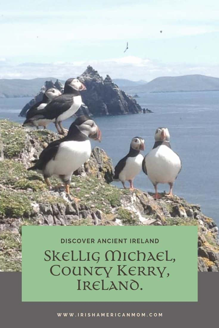 The Skellig Islands off the coast of Ireland are a wildlife nature reserve and home to many sea birds including puffins.