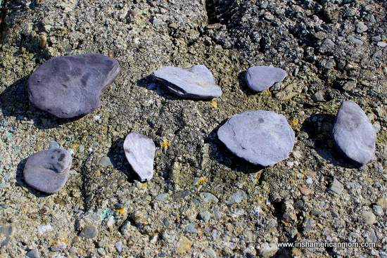 Flat oval stones for skimming or skipping