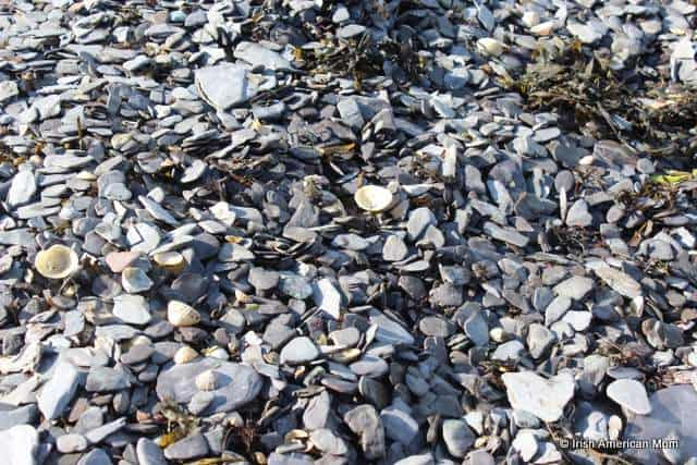 Perfect flat stones for skimming or skipping stones found in West Cork Ireland