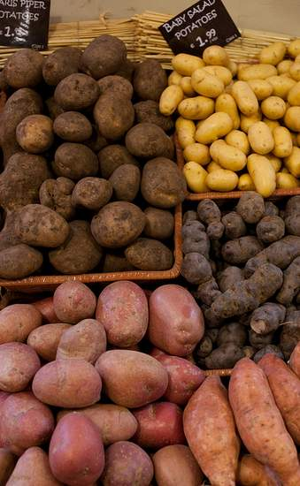 Selection of Irish potatoes