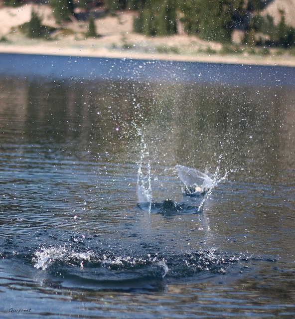 Skipping Stones over the surface of the water