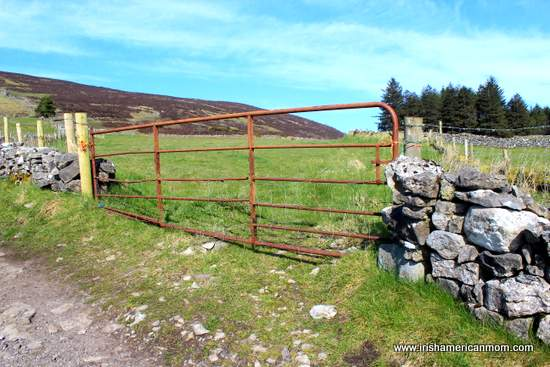 A rusty iron gate