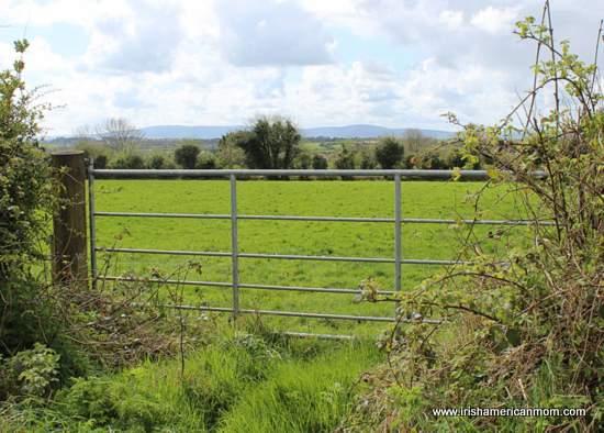 An Irish Farm Gate