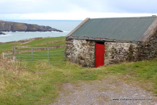 Red door on a cow shed by the West Cork Coastline