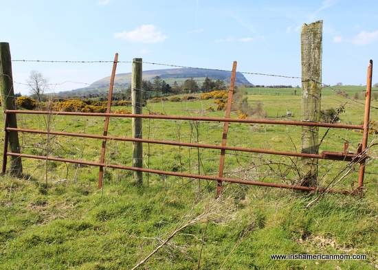 A rusty iron gate framing a view of Sligo's Knocknarea