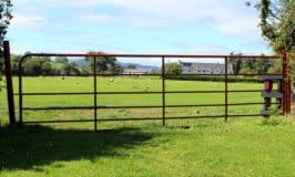 Green fertile field in Ireland seen through an iron gate