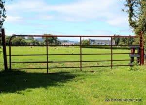 https://www.irishamericanmom.com/2016/09/13/the-metal-gate-irelands-picture-frame/