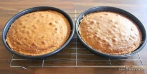 Two sponge sandwich layers in baking pans just out of the oven