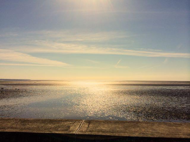 the-irish-coastline-in-county-louth