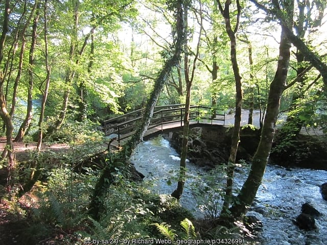 River flowing under a footbridge