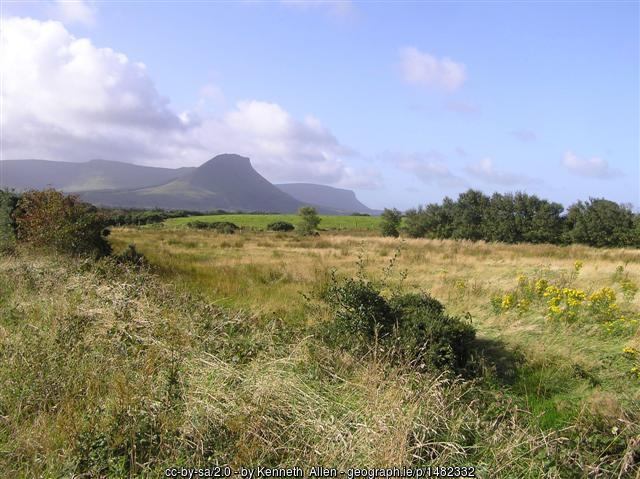 A field with a mountain in the background