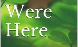 https://www.irishamericanmom.com/2017/04/12/irish-you-were-here-by-anne-driscoll/