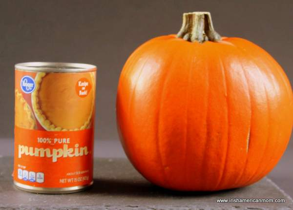 A can of pumpkin puree beside a medium sized pumpkin