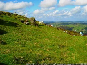 Slieve Gullion with sheep on the slopes and a blue cloudy sky