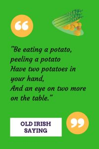 Old Irish saying about how to eat potatoes on a green graphic