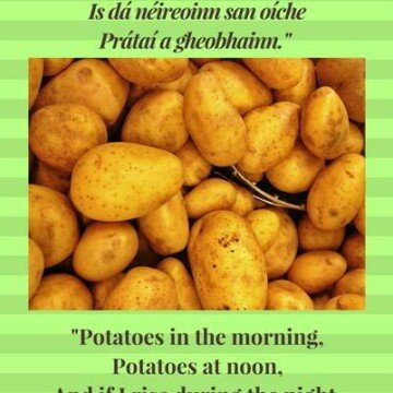 Old Irish potato saying