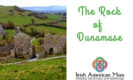 The Rock of Dunamase is found in County Laois and is home to the ruins of an old Norman castle.