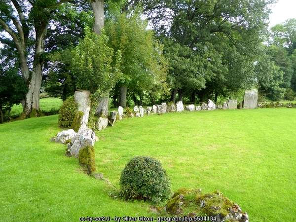 A group of standing stones in a circle sitting on top of a lush green field