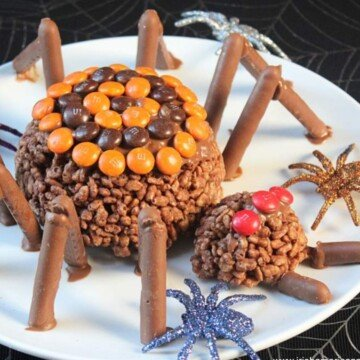 Chocolate rice crispie spider with chocolate legs on a plate