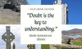 Doubt is the key to understanding