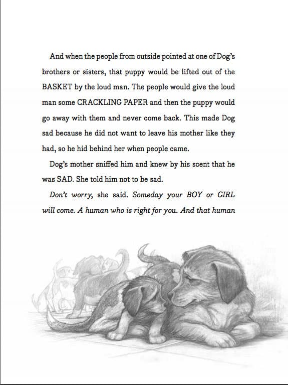 Excerpt from The Dog Who Lost His Bark by Eoin Colfer