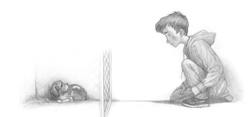 Pencil illustration from The Dog Who Lost His Bark by Eoin Colfer with illustrations by PJ Lynch