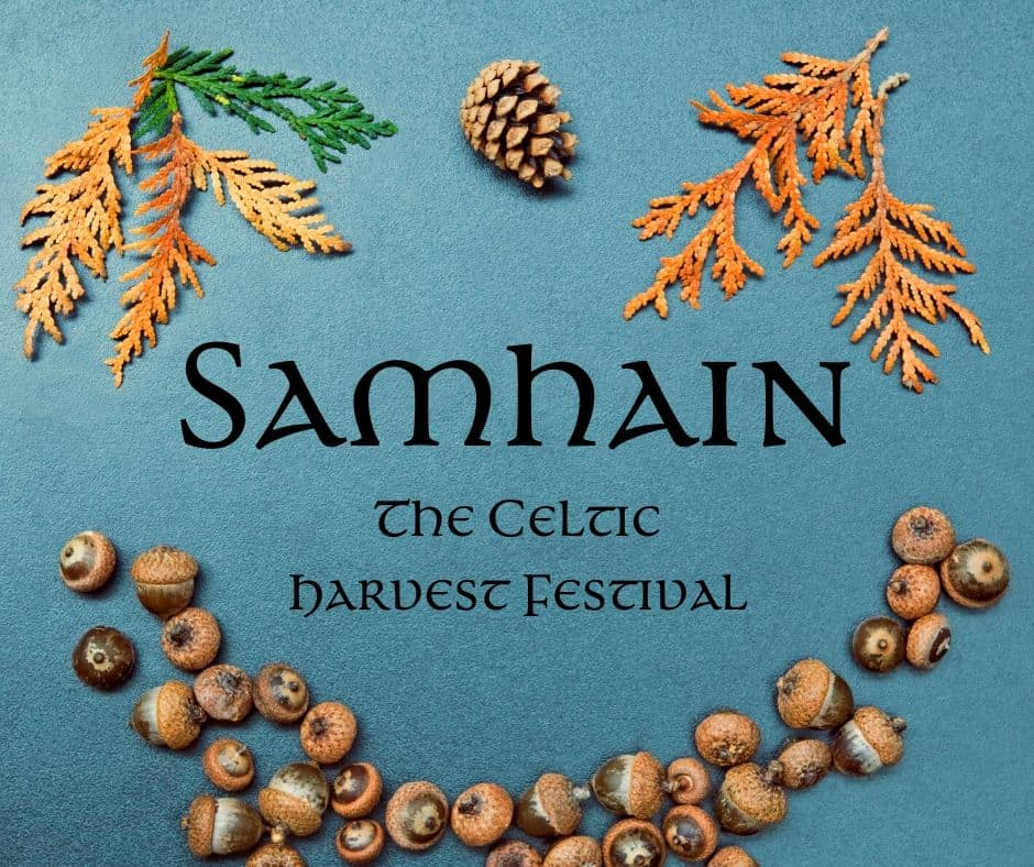 Samhain a harvest festival featured in a graphic with leaves, nuts and a pine cone