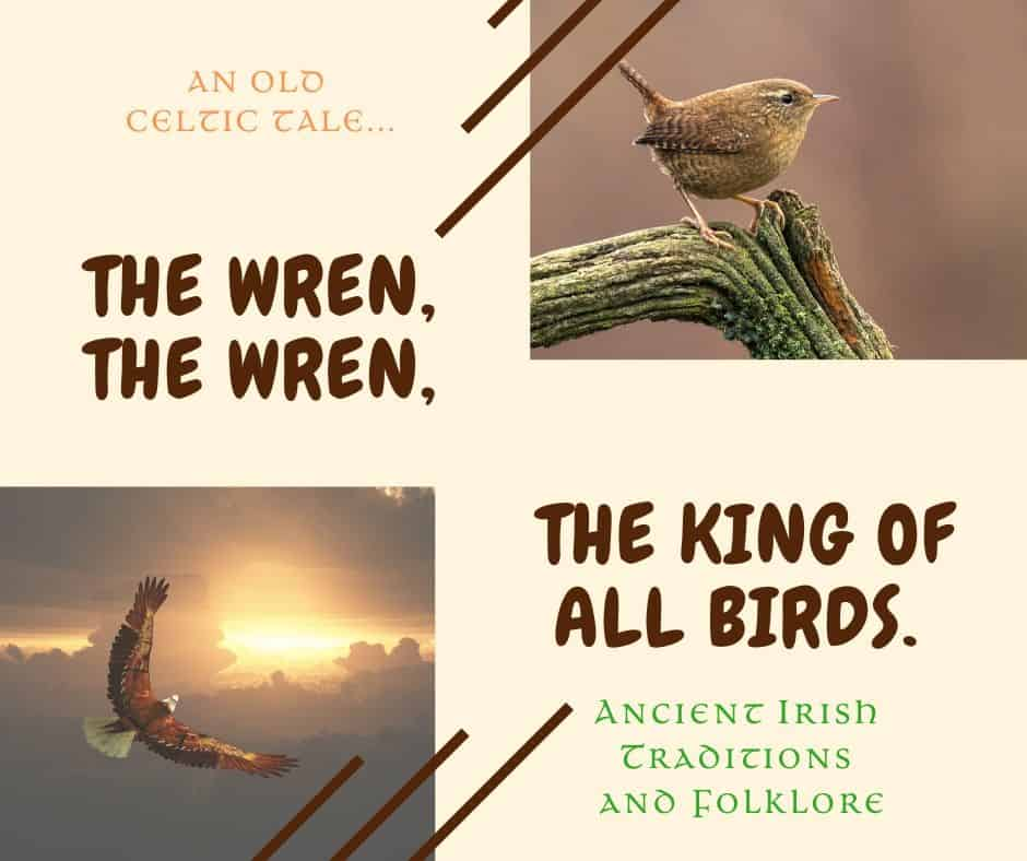 A graphic featuring a wren and an eagle to illustrate the King of all Birds