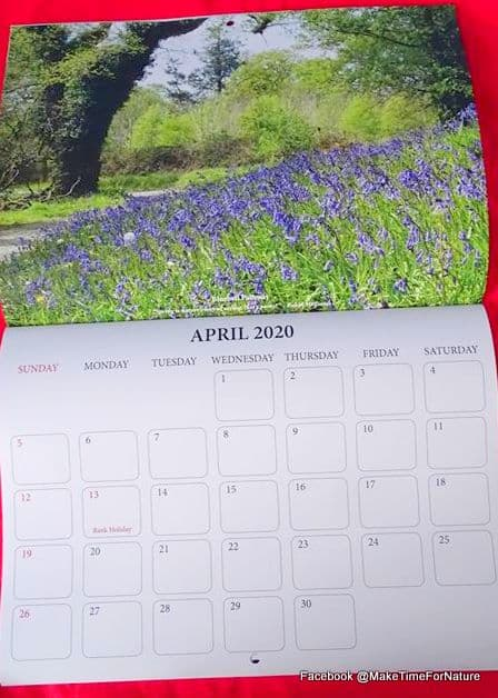 Bluebells growing under a tree on a calendar page for April 2020