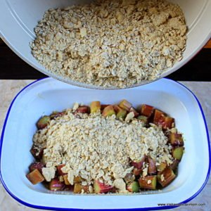 Par boiled rhubarb forms the base of a rhubarb crumble and is being topped with an oat and flour crumble mixture