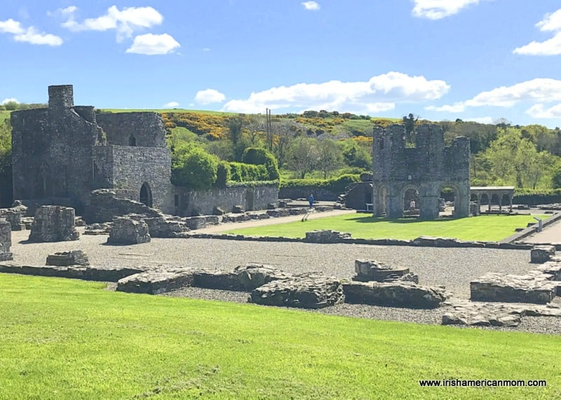 Ruined remains of stone monastic buildings at Old Mellifont Abbey