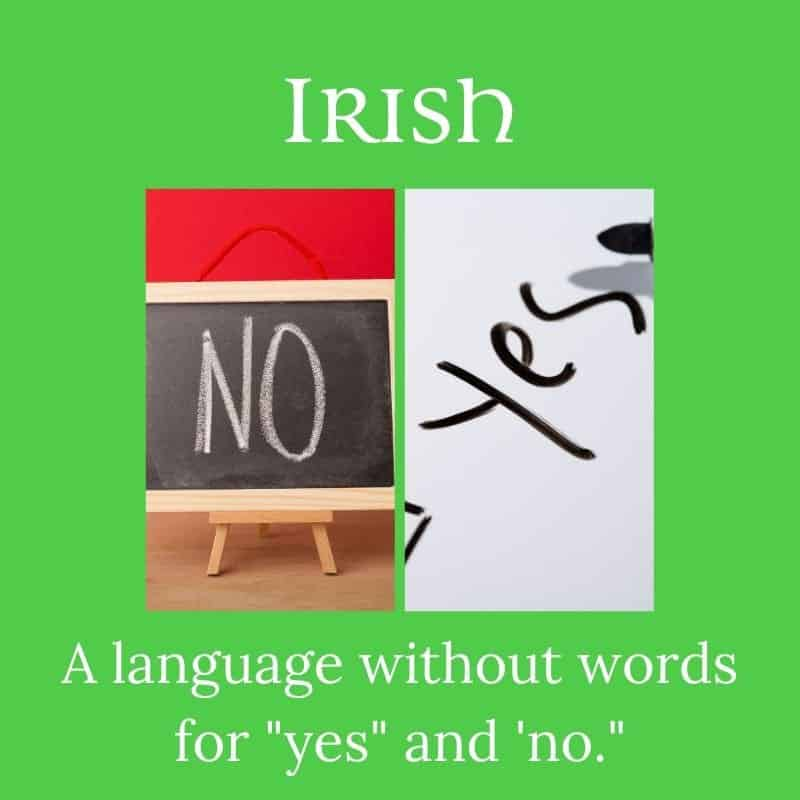 Graphic showing the words yes and no surrounded by a green frame border