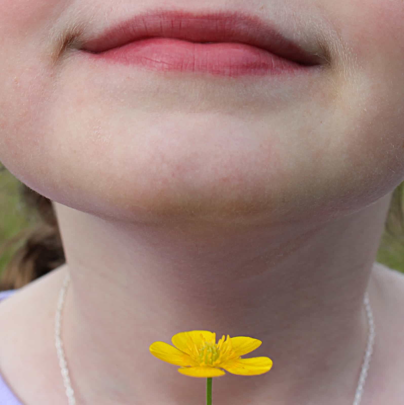 Holding a yellow buttercup under the chin