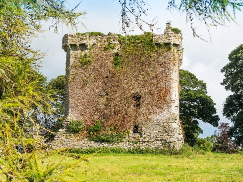 Ivy covering a large stone castle ruin or keep