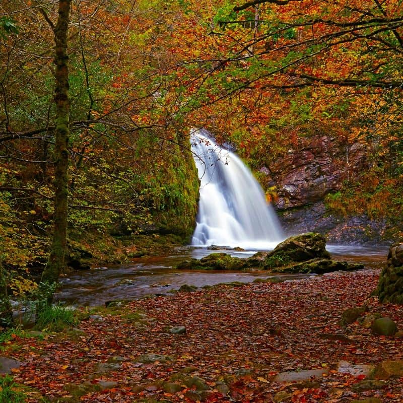 A cascading waterfall surrounded by fall foliage