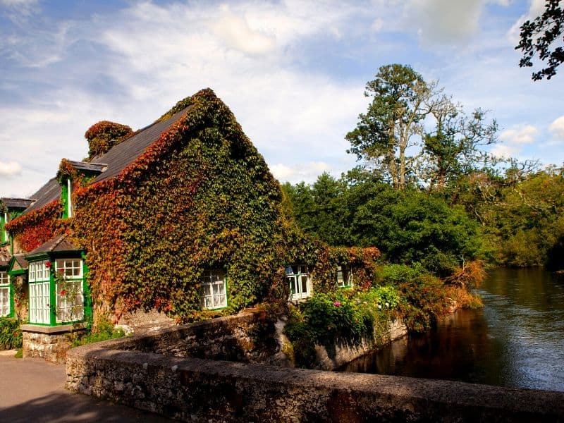 An ivy covered house by a bridge