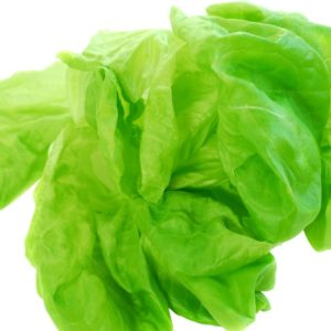 Green Boston or Bibb lettuce leaves on a white background