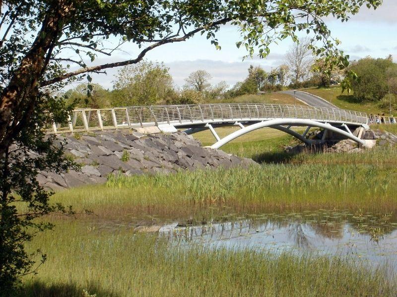 A walking bridge over a lake of reeds