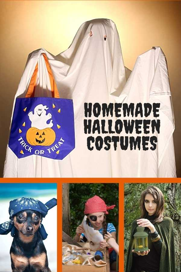 A four picture collage featuring homemade Halloween costumes including a sheet ghost, pirates, a witch with a lamp and a dog with a Mexican bandana